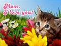 Mother's Day Kitten