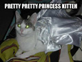 Princess Cat